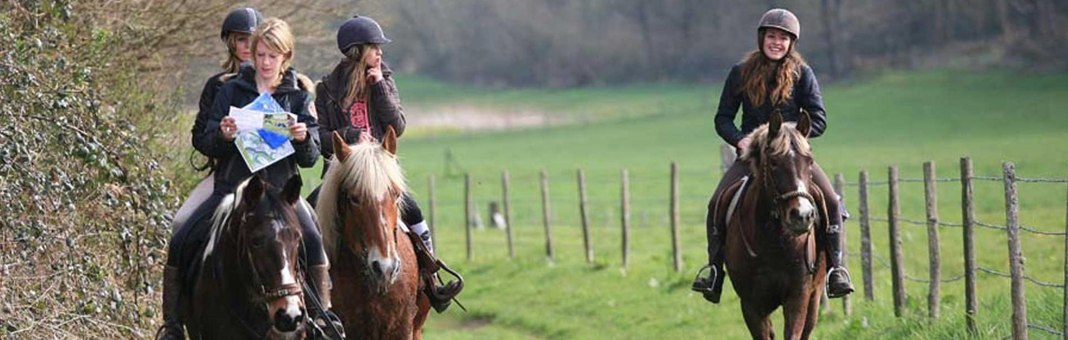 En route pour une balade à cheval !    6 circuits pédestres entre 21 et 38 km vous sont proposés. Entretenus et balisés par l'office de tourisme, ces 1